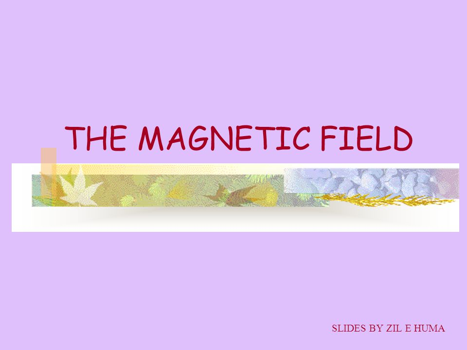 OBJECTIVES MAGNET THE MAGNETIC FIELD B MAGNETIC FIELD DUE TO A CURENT