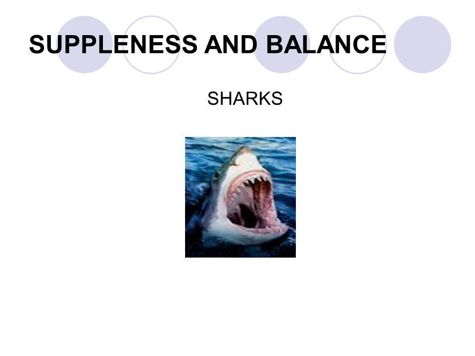SUPPLENESS AND BALANCE SHARKS