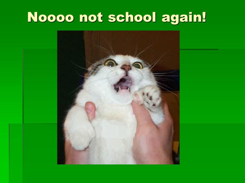 Noooo not school again!