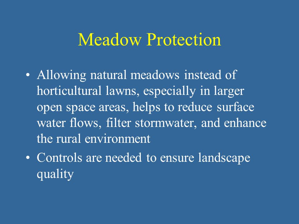 Meadow Protection Allowing natural meadows instead of horticultural lawns, especially in larger open space areas, helps to reduce surface water flows, filter stormwater, and enhance the rural environment Controls are needed to ensure landscape quality