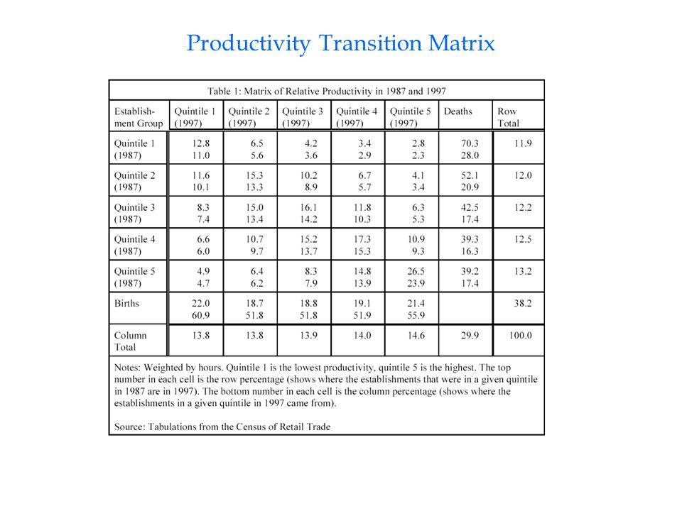 Productivity Transition Matrix