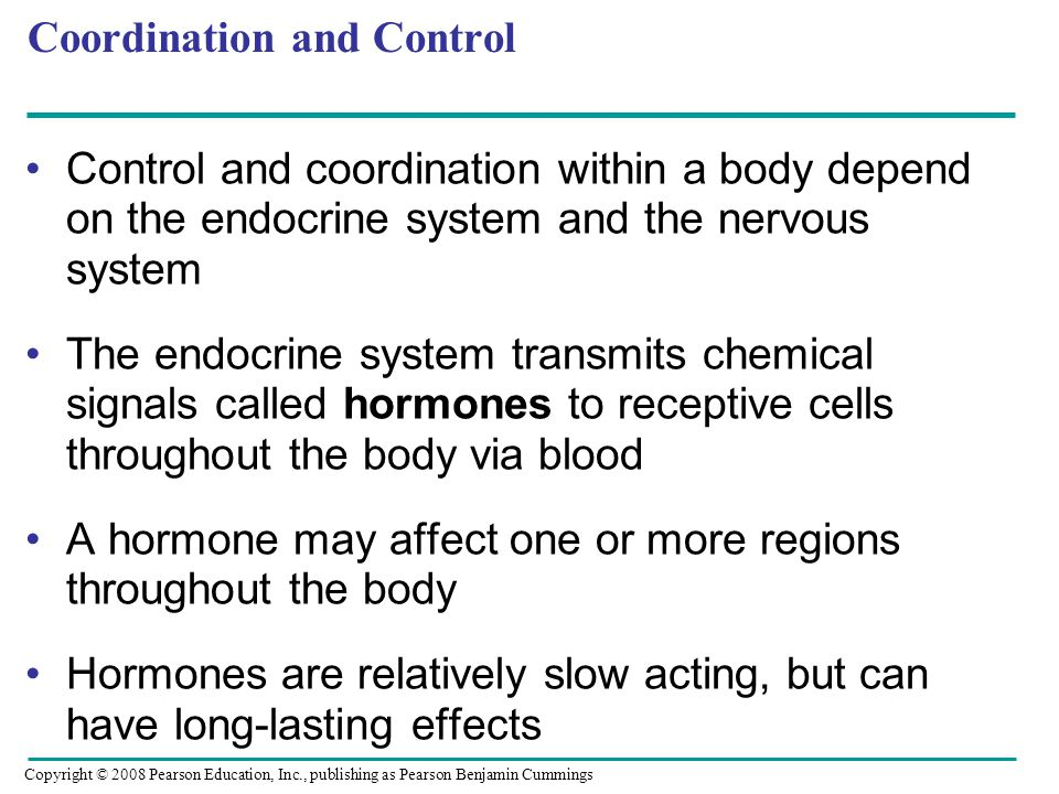 Coordination and Control Control and coordination within a body depend on the endocrine system and the nervous system The endocrine system transmits chemical signals called hormones to receptive cells throughout the body via blood A hormone may affect one or more regions throughout the body Hormones are relatively slow acting, but can have long-lasting effects Copyright © 2008 Pearson Education, Inc., publishing as Pearson Benjamin Cummings