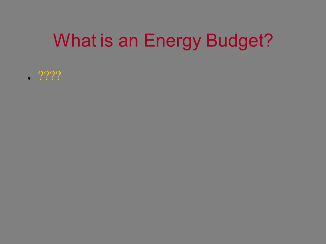 What is an Energy Budget? ● ????