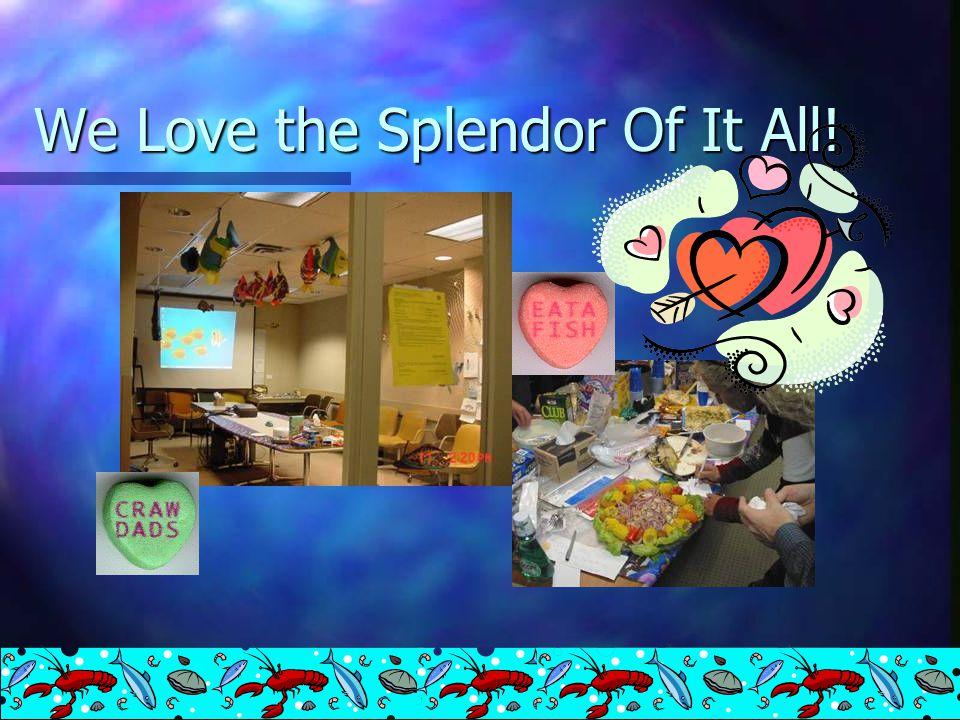 We Love the Splendor Of It All!
