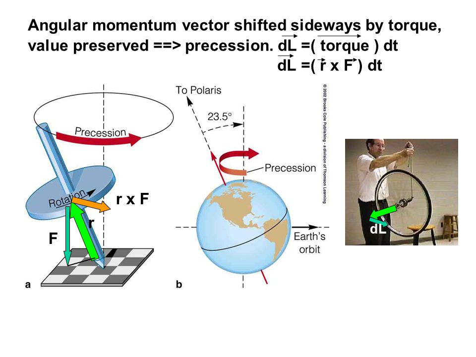 Angular momentum vector shifted sideways by torque, value preserved ==> precession.