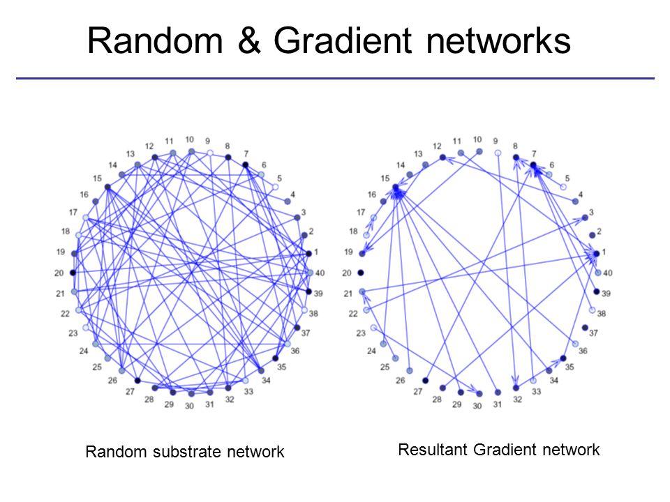 Random & Gradient networks Random substrate network Resultant Gradient network