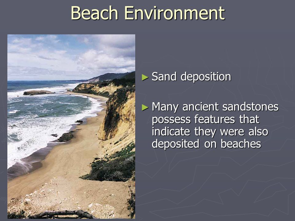 ► Sedimentary rocks may be  Detrital or chemical, including biochemical (made through life processes)  all preserve evidence of the physical, chemical and biological processes that formed them Sedimentary rocks