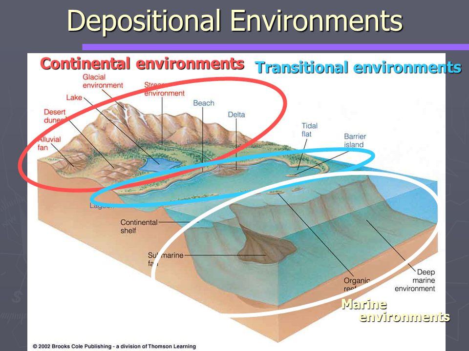 Continental environments Transitional environments Marine environments