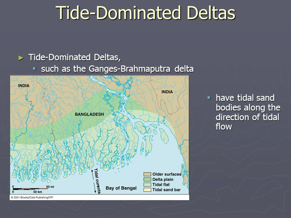 ► Tide-Dominated Deltas,  such as the Ganges-Brahmaputra delta Tide-Dominated Deltas  have tidal sand bodies along the direction of tidal flow