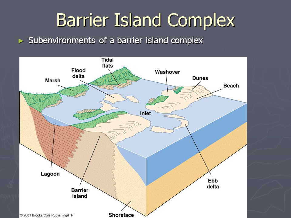 ► Subenvironments of a barrier island complex Barrier Island Complex