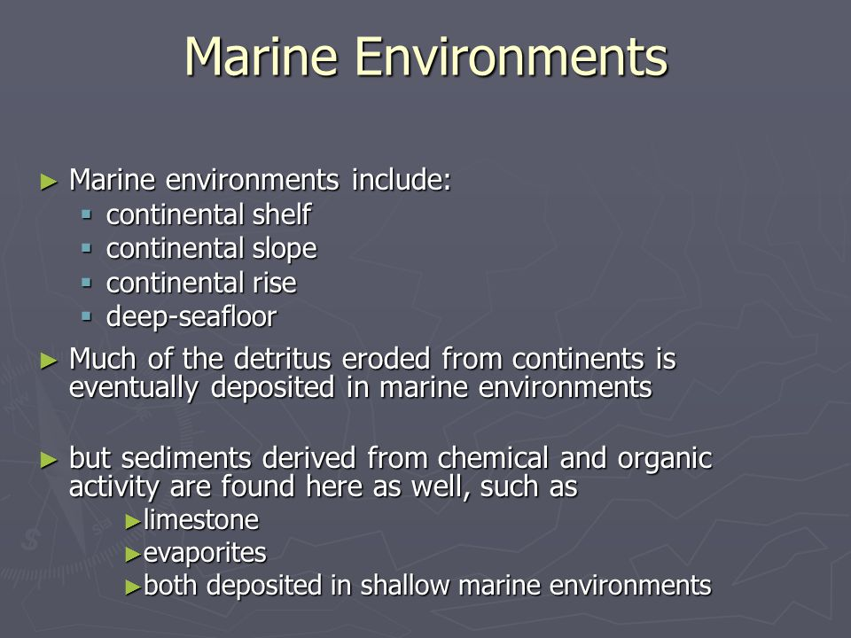 ► Marine environments include:  continental shelf  continental slope  continental rise  deep-seafloor ► Much of the detritus eroded from continent