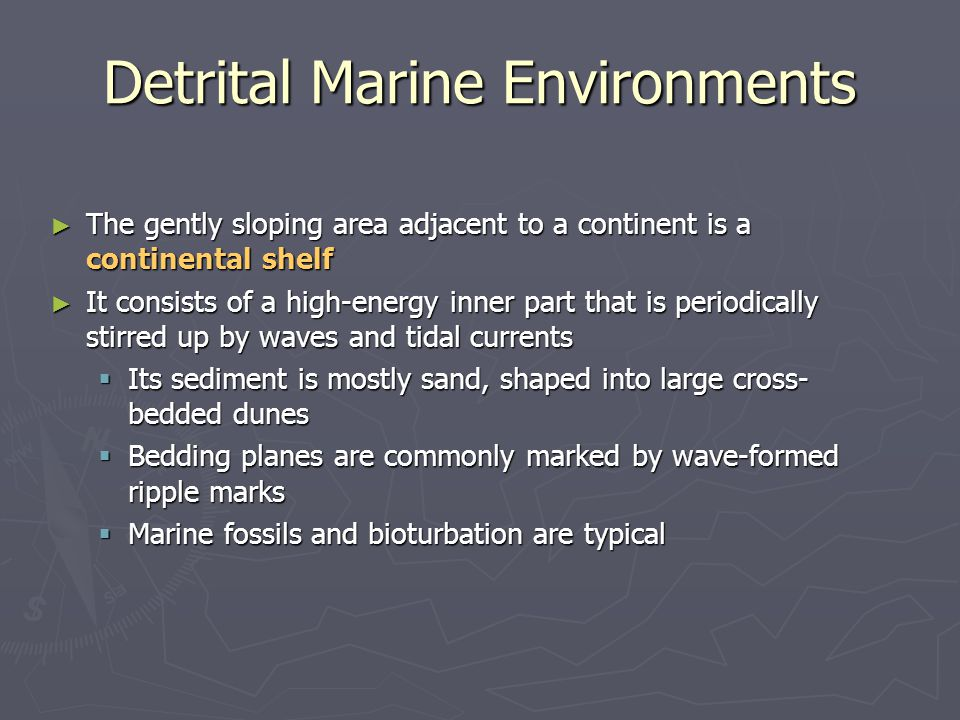 ► The gently sloping area adjacent to a continent is a continental shelf ► It consists of a high-energy inner part that is periodically stirred up by