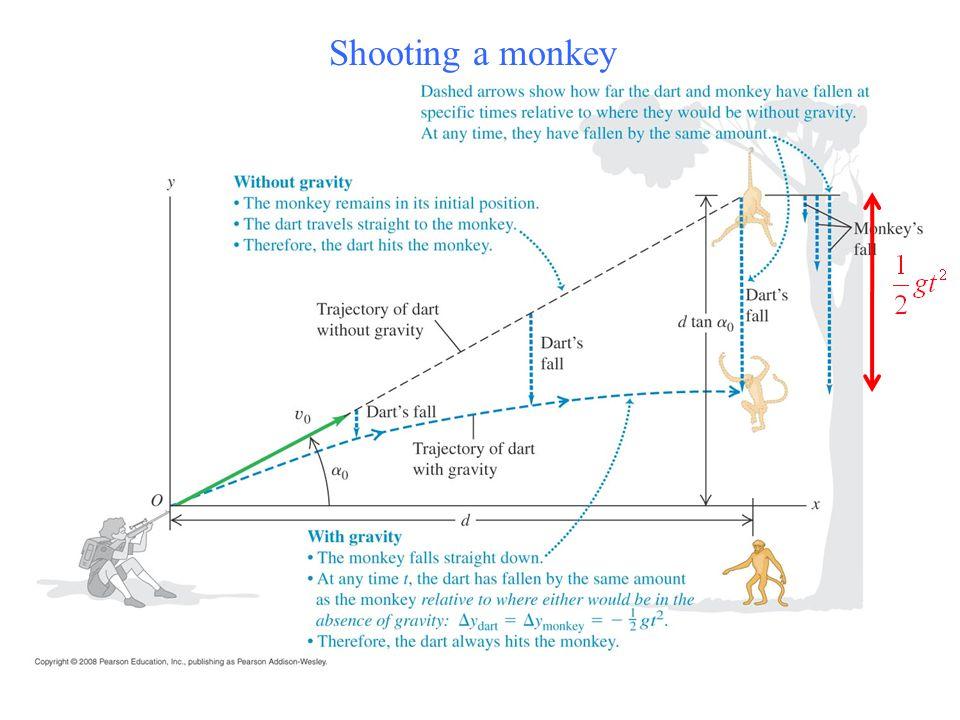 Shooting a monkey