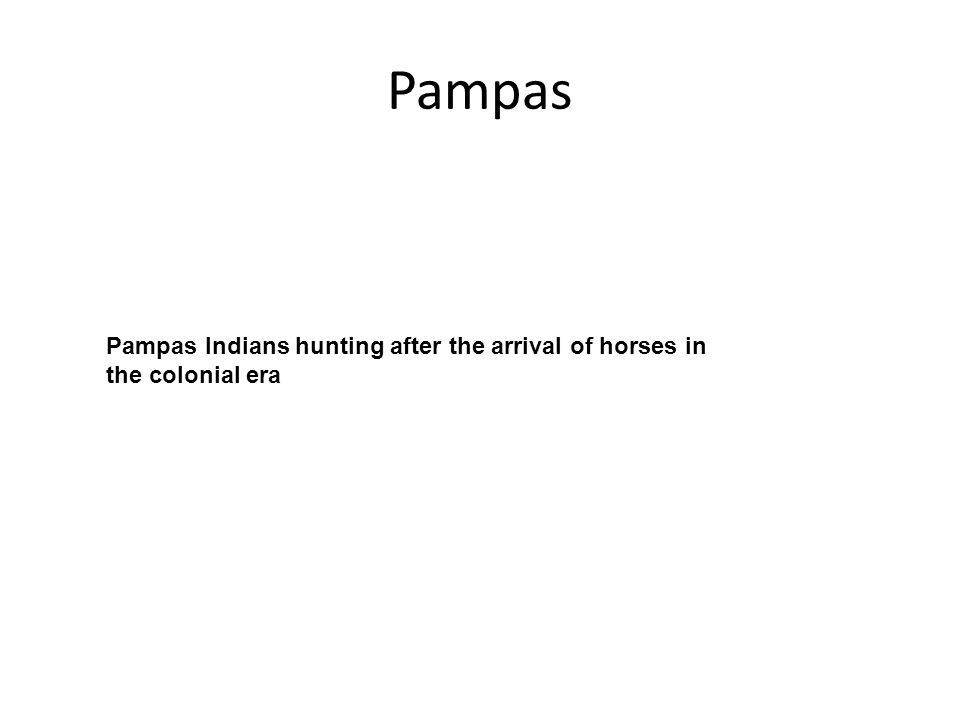 Pampas Pampas Indians hunting after the arrival of horses in the colonial era