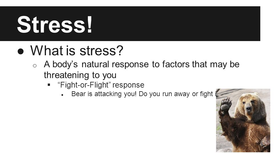 Let's Talk About Stress. ●What is stress.