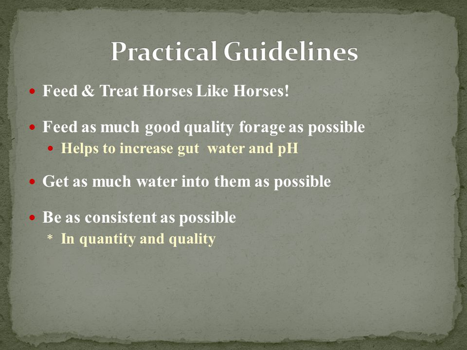 Feed & Treat Horses Like Horses! Feed as much good quality forage as possible Helps to increase gut water and pH Get as much water into them as possib