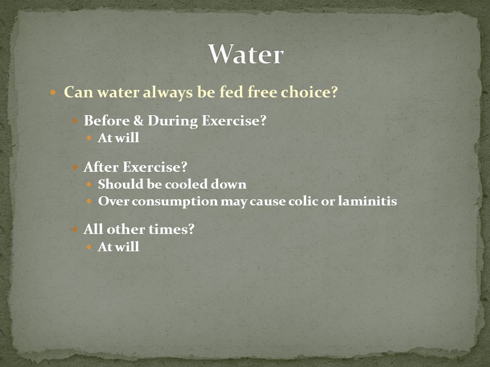 Can water always be fed free choice? Before & During Exercise? At will After Exercise? Should be cooled down Over consumption may cause colic or lamin