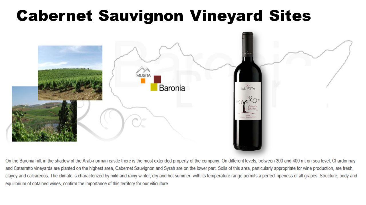 Cabernet Sauvignon Vineyard Sites