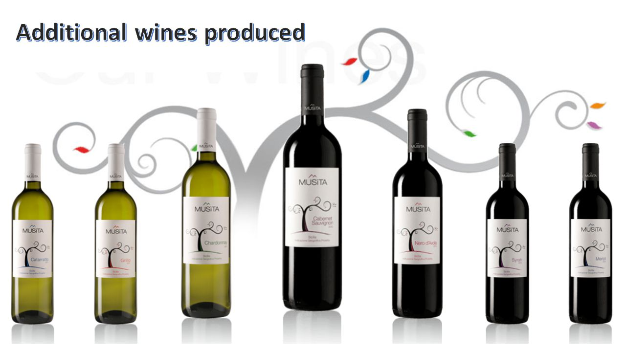 Additional Wines produced at Musita