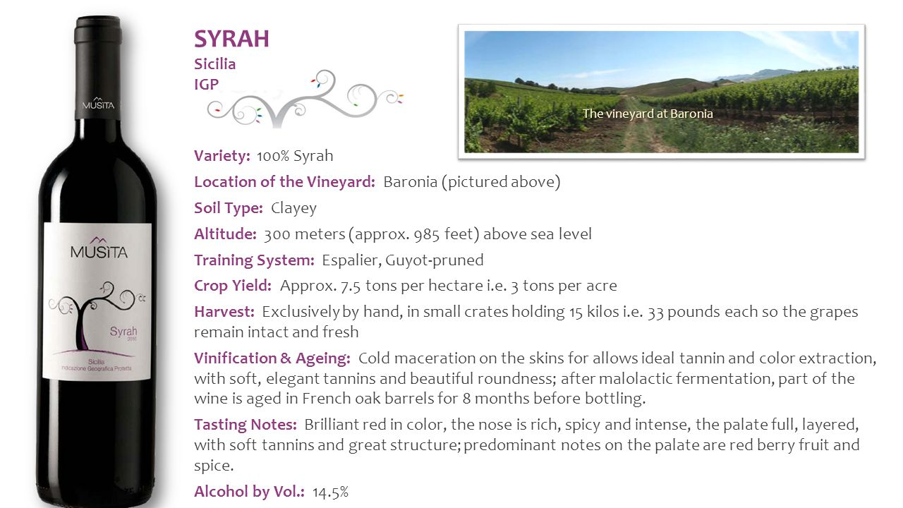 Variety: 100% Syrah Location of the Vineyard: Baronia (pictured above) Soil Type: Clayey Altitude: 300 meters (approx.