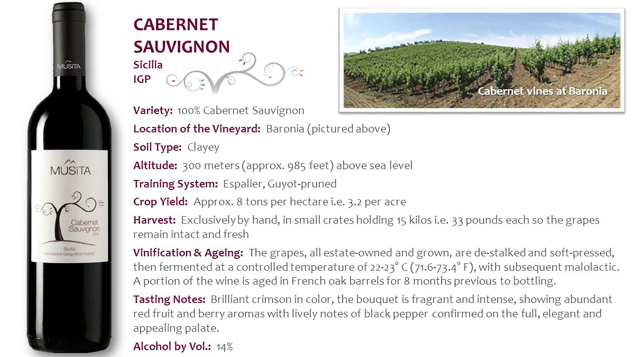 Variety: 100% Cabernet Sauvignon Location of the Vineyard: Baronia (pictured above) Soil Type: Clayey Altitude: 300 meters (approx.