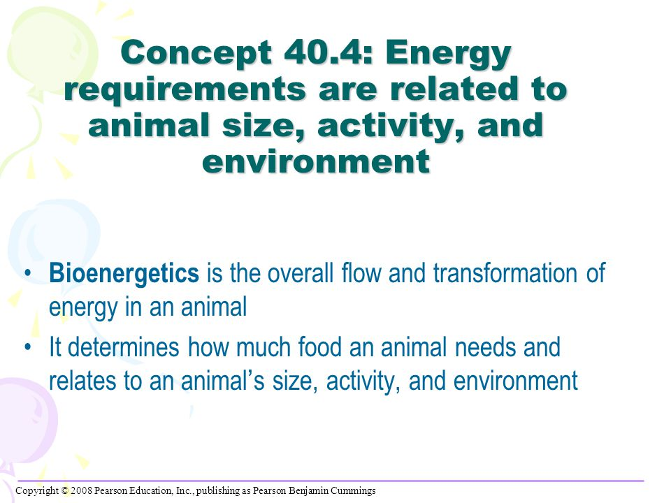 Concept 40.4: Energy requirements are related to animal size, activity, and environment Bioenergetics is the overall flow and transformation of energy in an animal It determines how much food an animal needs and relates to an animal ' s size, activity, and environment Copyright © 2008 Pearson Education, Inc., publishing as Pearson Benjamin Cummings