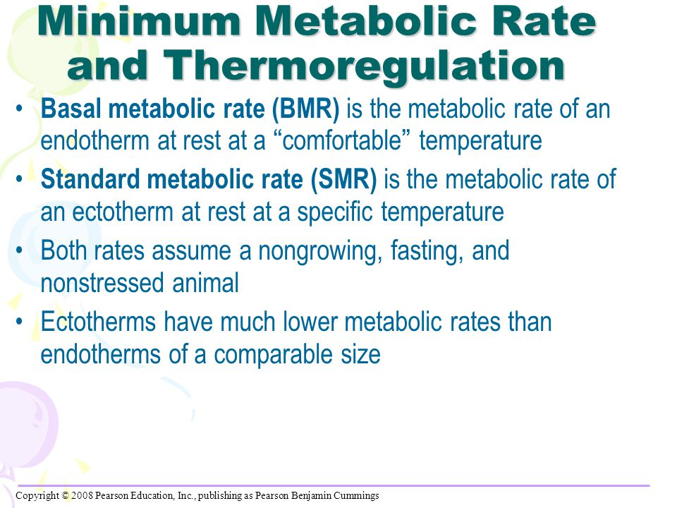 Minimum Metabolic Rate and Thermoregulation Basal metabolic rate (BMR) is the metabolic rate of an endotherm at rest at a comfortable temperature Standard metabolic rate (SMR) is the metabolic rate of an ectotherm at rest at a specific temperature Both rates assume a nongrowing, fasting, and nonstressed animal Ectotherms have much lower metabolic rates than endotherms of a comparable size Copyright © 2008 Pearson Education, Inc., publishing as Pearson Benjamin Cummings