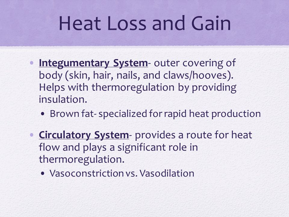 Heat Loss and Gain Integumentary System- outer covering of body (skin, hair, nails, and claws/hooves).