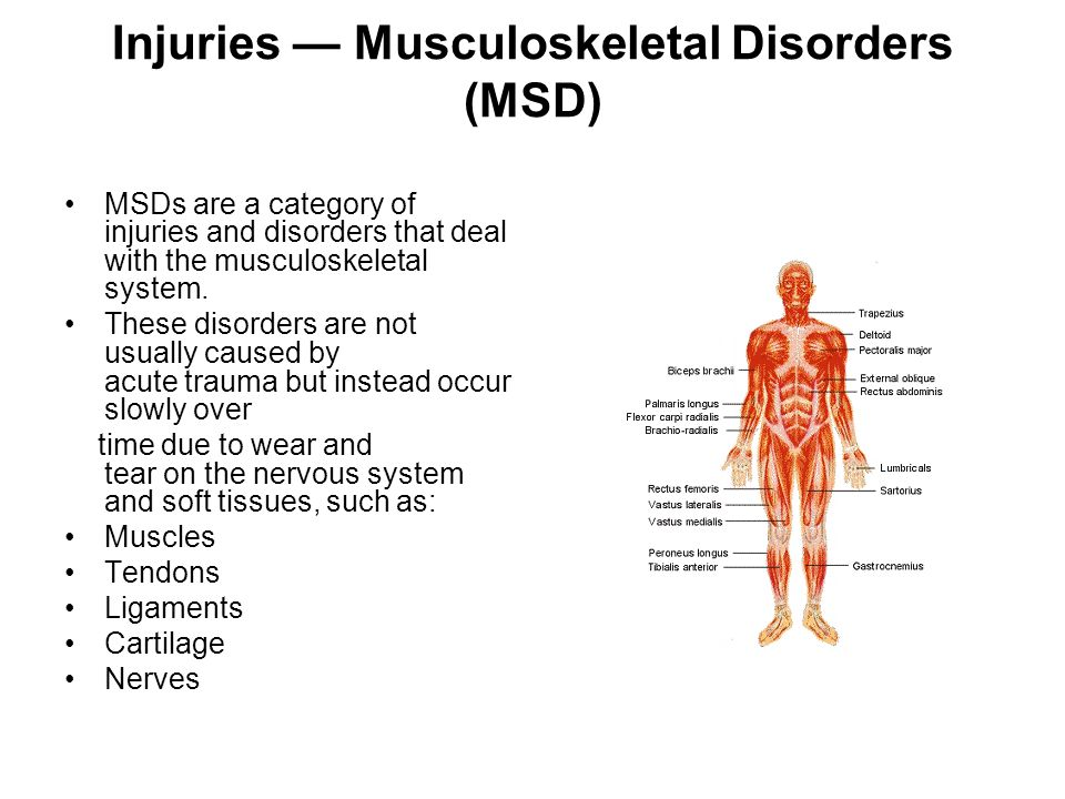 Injuries — Musculoskeletal Disorders (MSD) MSDs are a category of injuries and disorders that deal with the musculoskeletal system.