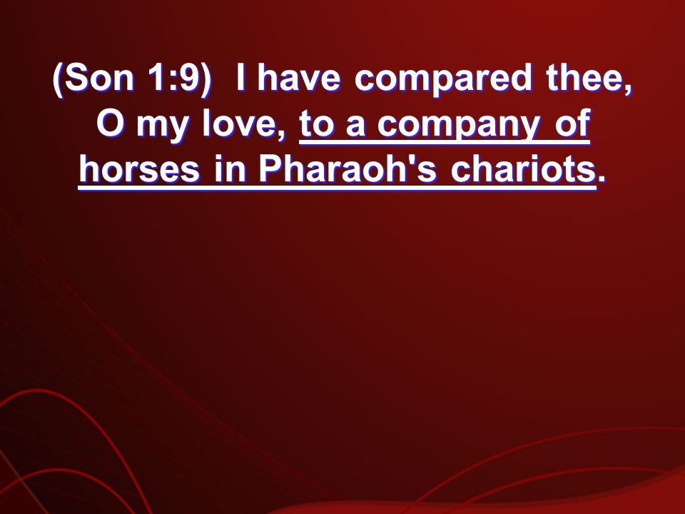 (Son 1:9) I have compared thee, O my love, to a company of horses in Pharaoh s chariots.
