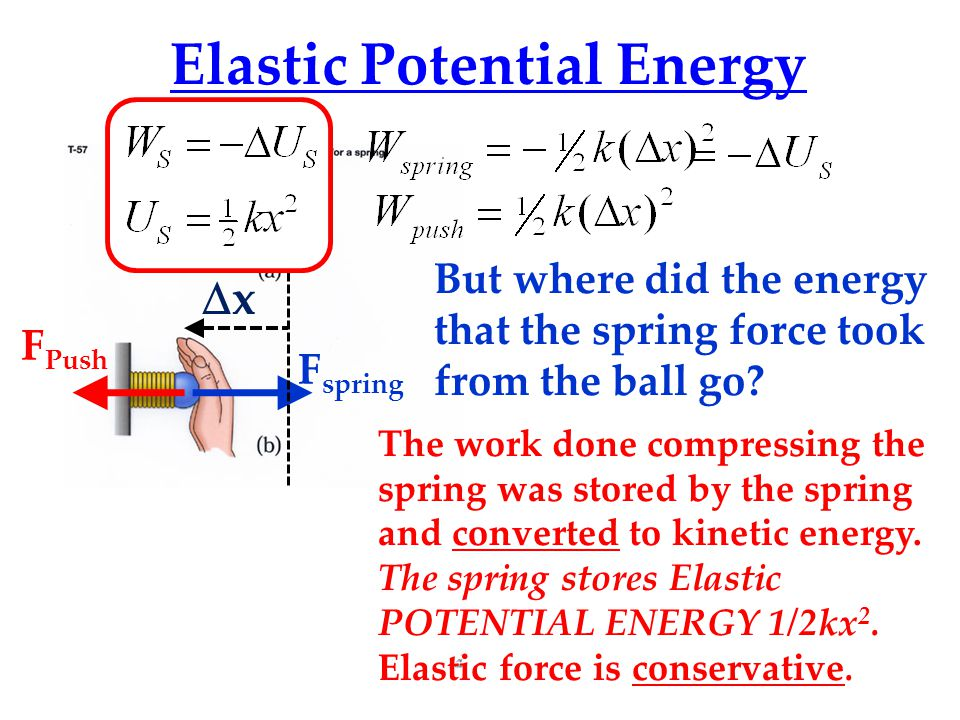 Elastic Potential Energy F spring F Push xx But where did the energy that the spring force took from the ball go.