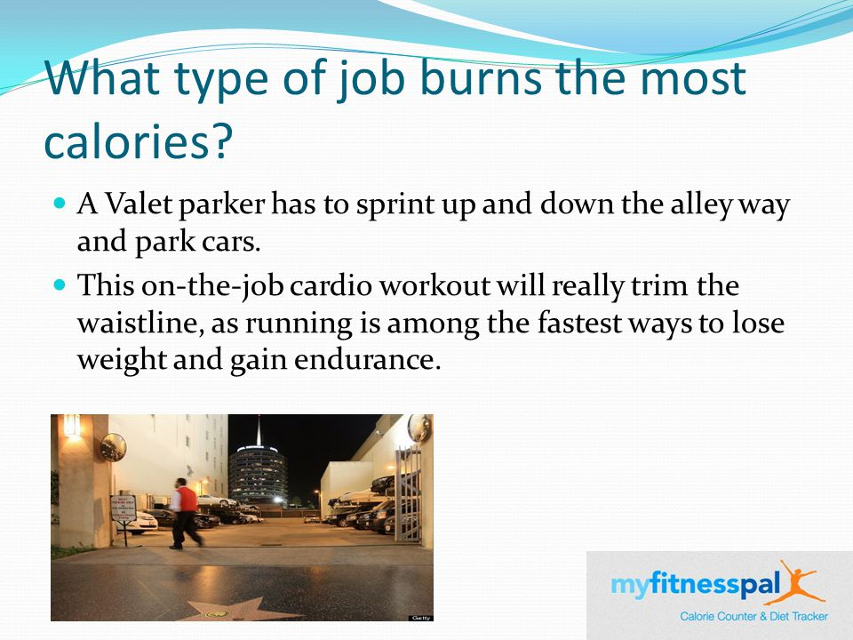 What type of job burns the most calories.