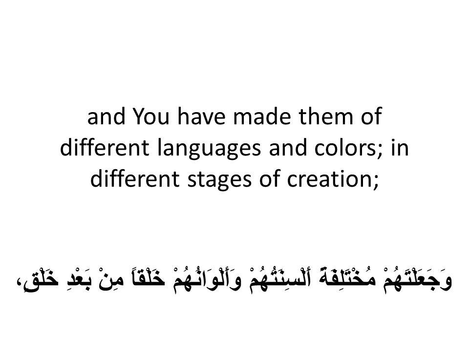 and You have made them of different languages and colors; in different stages of creation; وَجَعَلْتَهُمْ مُخْتَلِفَةً أَلْسِنَتُهُمْ وَأَلْوَانُهُمْ خَلْقاً مِنْ بَعْدِ خَلْقٍ،