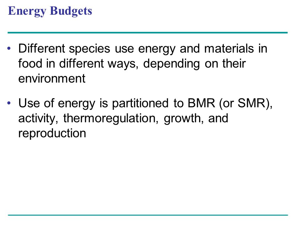 Different species use energy and materials in food in different ways, depending on their environment Use of energy is partitioned to BMR (or SMR), act