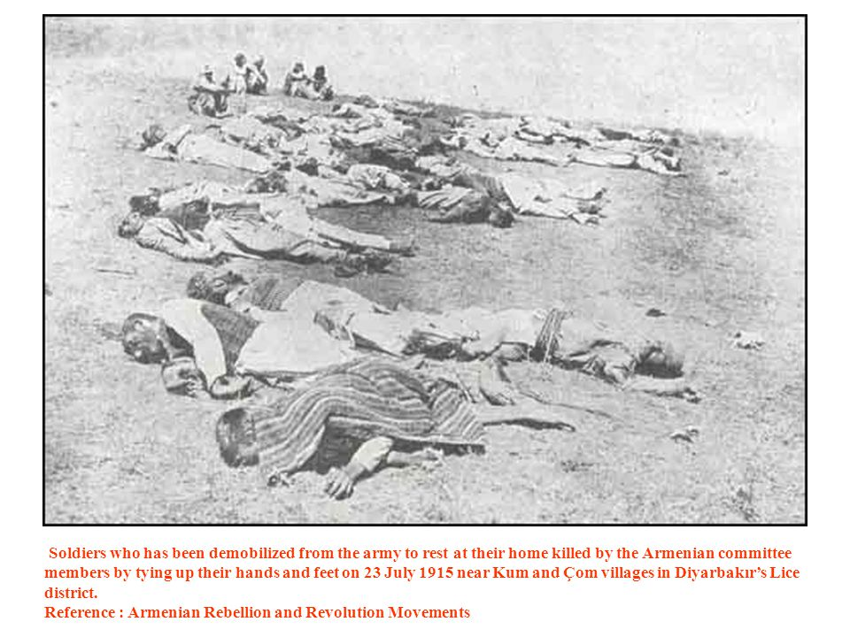 Soldiers who has been demobilized from the army to rest at their home killed by the Armenian committee members by tying up their hands and feet on 23 July 1915 near Kum and Çom villages in Diyarbakır's Lice district.