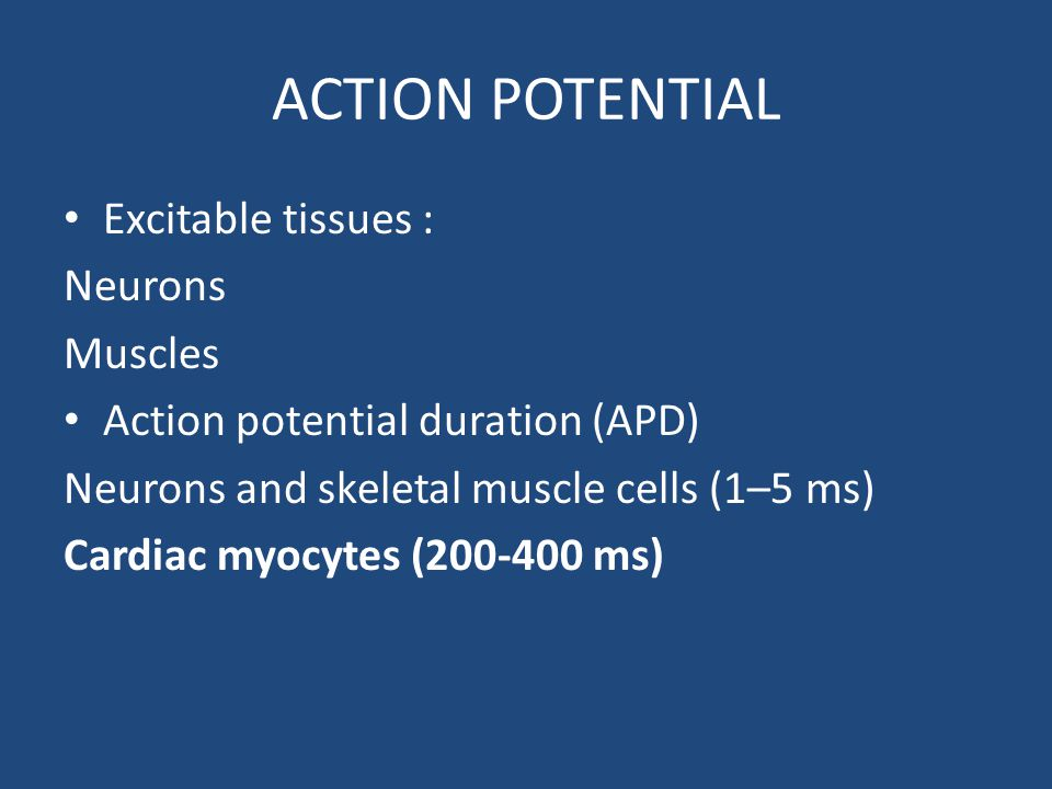 ACTION POTENTIAL Excitable tissues : Neurons Muscles Action potential duration (APD) Neurons and skeletal muscle cells (1–5 ms) Cardiac myocytes (200-