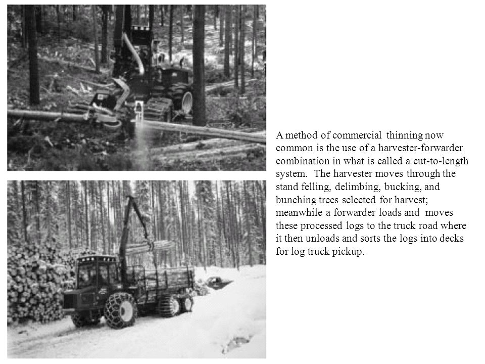 A method of commercial thinning now common is the use of a harvester-forwarder combination in what is called a cut-to-length system. The harvester mov