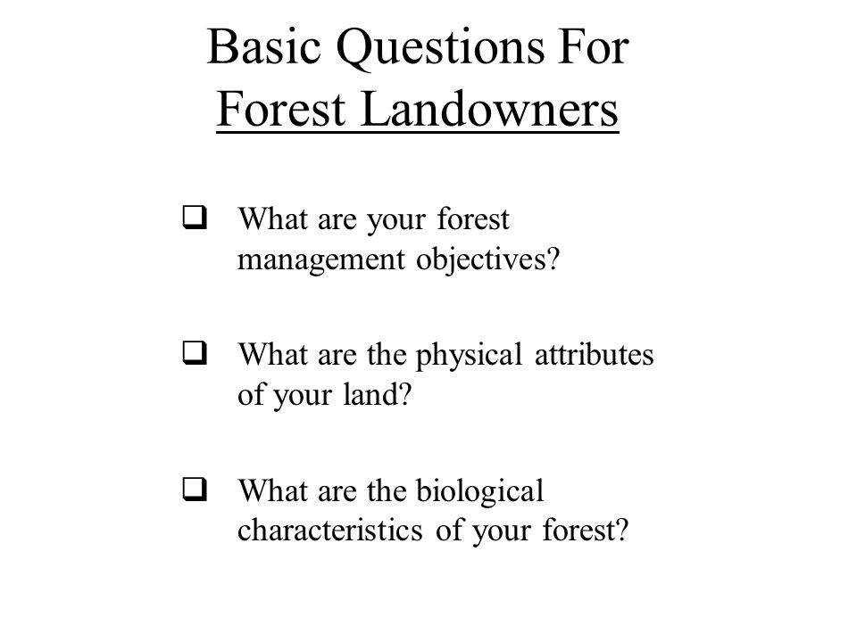 Basic Questions For Forest Landowners  What are your forest management objectives?  What are the physical attributes of your land?  What are the bi
