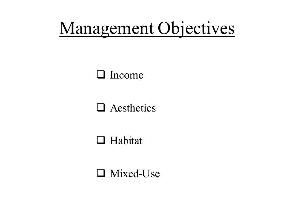 Management Objectives  Income  Aesthetics  Habitat  Mixed-Use