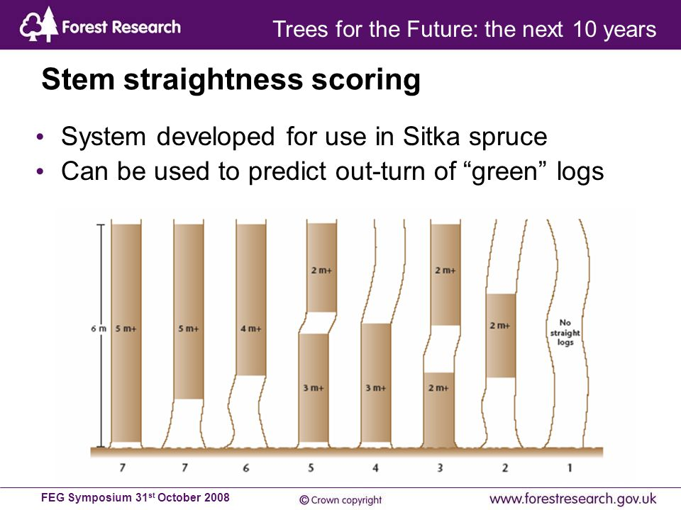 FEG Symposium 31 st October 2008 System developed for use in Sitka spruce Can be used to predict out-turn of green logs Stem straightness scoring Trees for the Future: the next 10 years