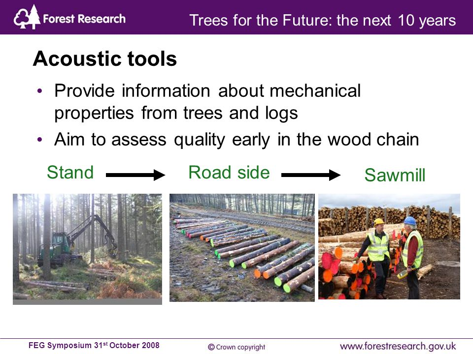 FEG Symposium 31 st October 2008 Acoustic tools Provide information about mechanical properties from trees and logs Aim to assess quality early in the wood chain Sawmill Road sideStand Trees for the Future: the next 10 years