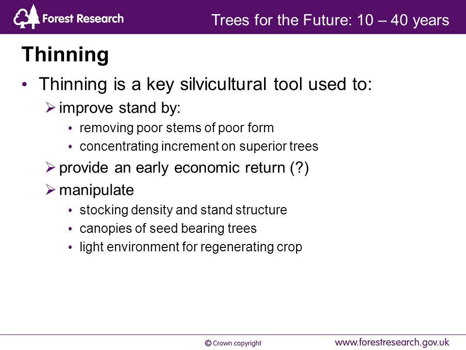 Thinning Thinning is a key silvicultural tool used to:  improve stand by: removing poor stems of poor form concentrating increment on superior trees  provide an early economic return ( )  manipulate stocking density and stand structure canopies of seed bearing trees light environment for regenerating crop Trees for the Future: 10 – 40 years
