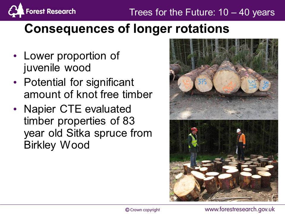 Consequences of longer rotations Lower proportion of juvenile wood Potential for significant amount of knot free timber Napier CTE evaluated timber properties of 83 year old Sitka spruce from Birkley Wood Trees for the Future: 10 – 40 years