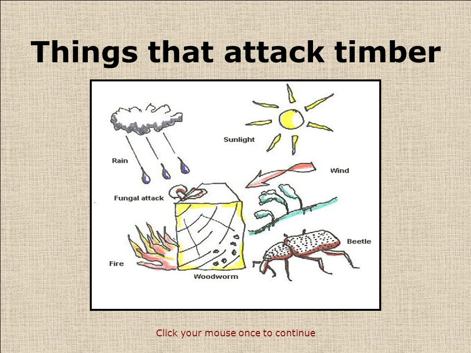 Defects in timber Timber is a natural material that is prone to defects.