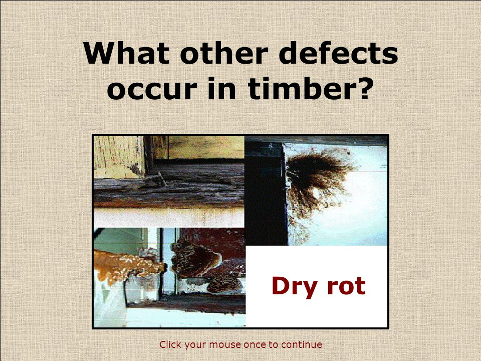 What other defects occur in timber.