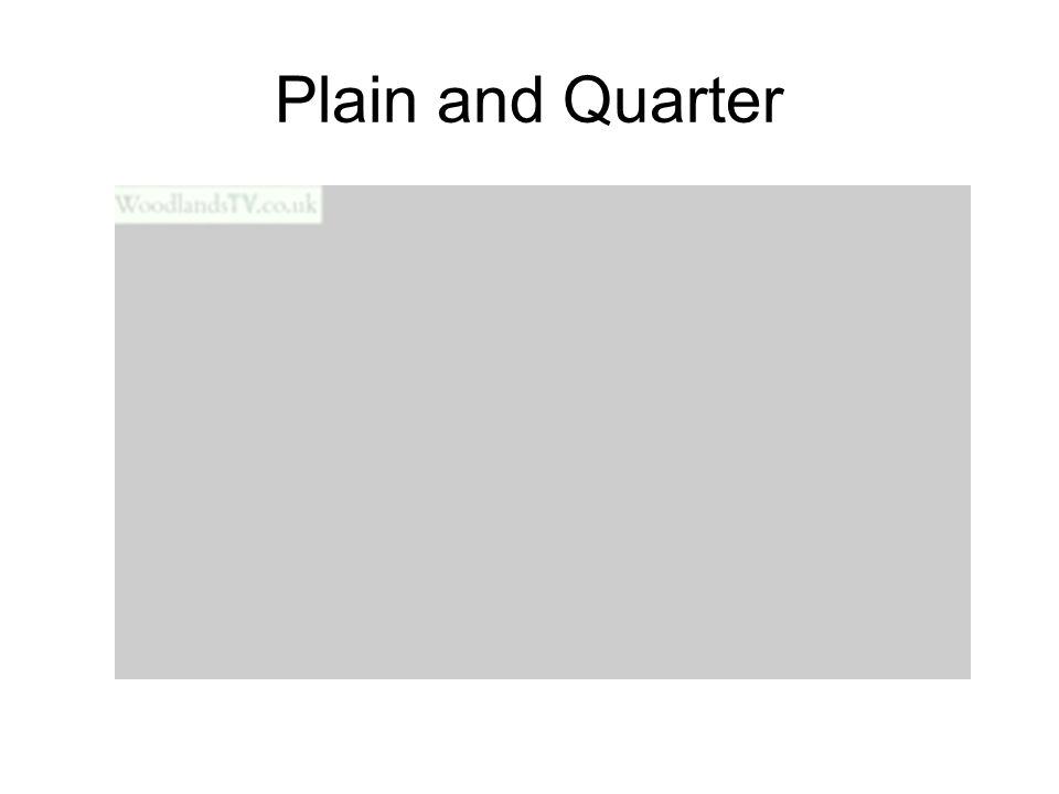 Plain and Quarter