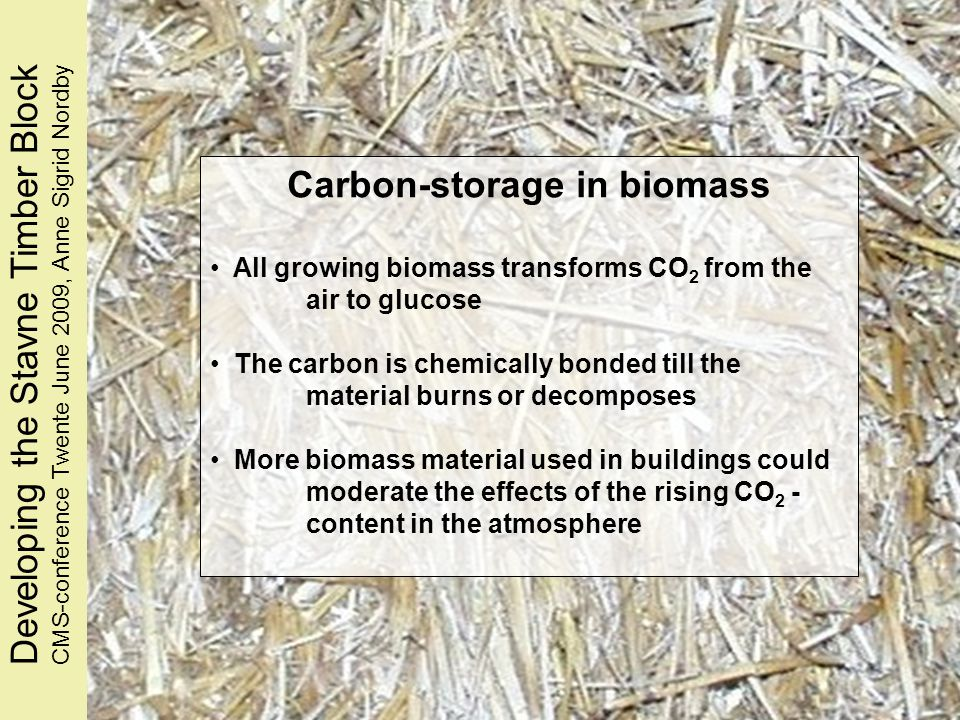 Carbon-storage in biomass All growing biomass transforms CO 2 from the air to glucose The carbon is chemically bonded till the material burns or decomposes More biomass material used in buildings could moderate the effects of the rising CO 2 - content in the atmosphere Developing the Stavne Timber BlockCMS-conference Twente June 2009, Anne Sigrid Nordby