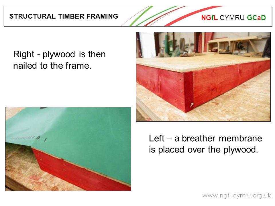 NGfL CYMRU GCaD www.ngfl-cymru.org.uk Right - plywood is then nailed to the frame.