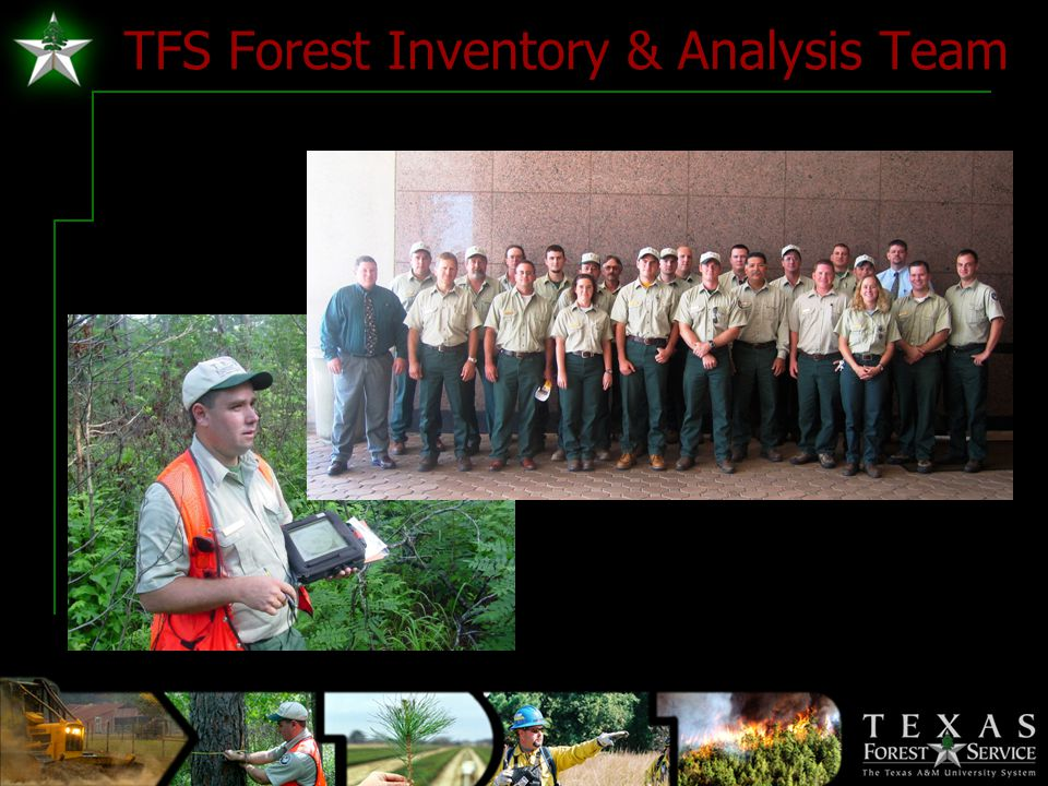 TFS Forest Inventory & Analysis Team