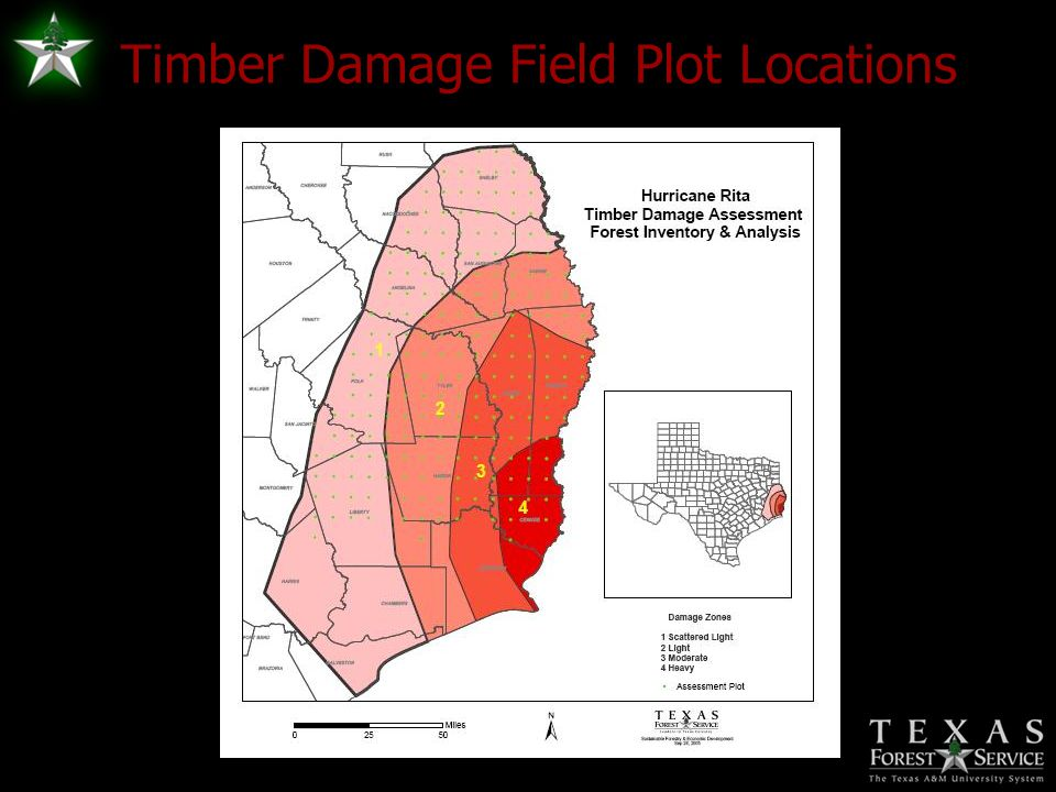 Timber Damage Field Plot Locations
